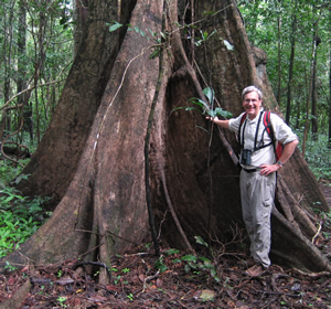 Michael G Ryan in a Brazilian Forest