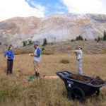 A fine-looking crew of Ecology grad students restore a degraded fen site in the San Juan Mountains, Colorado.