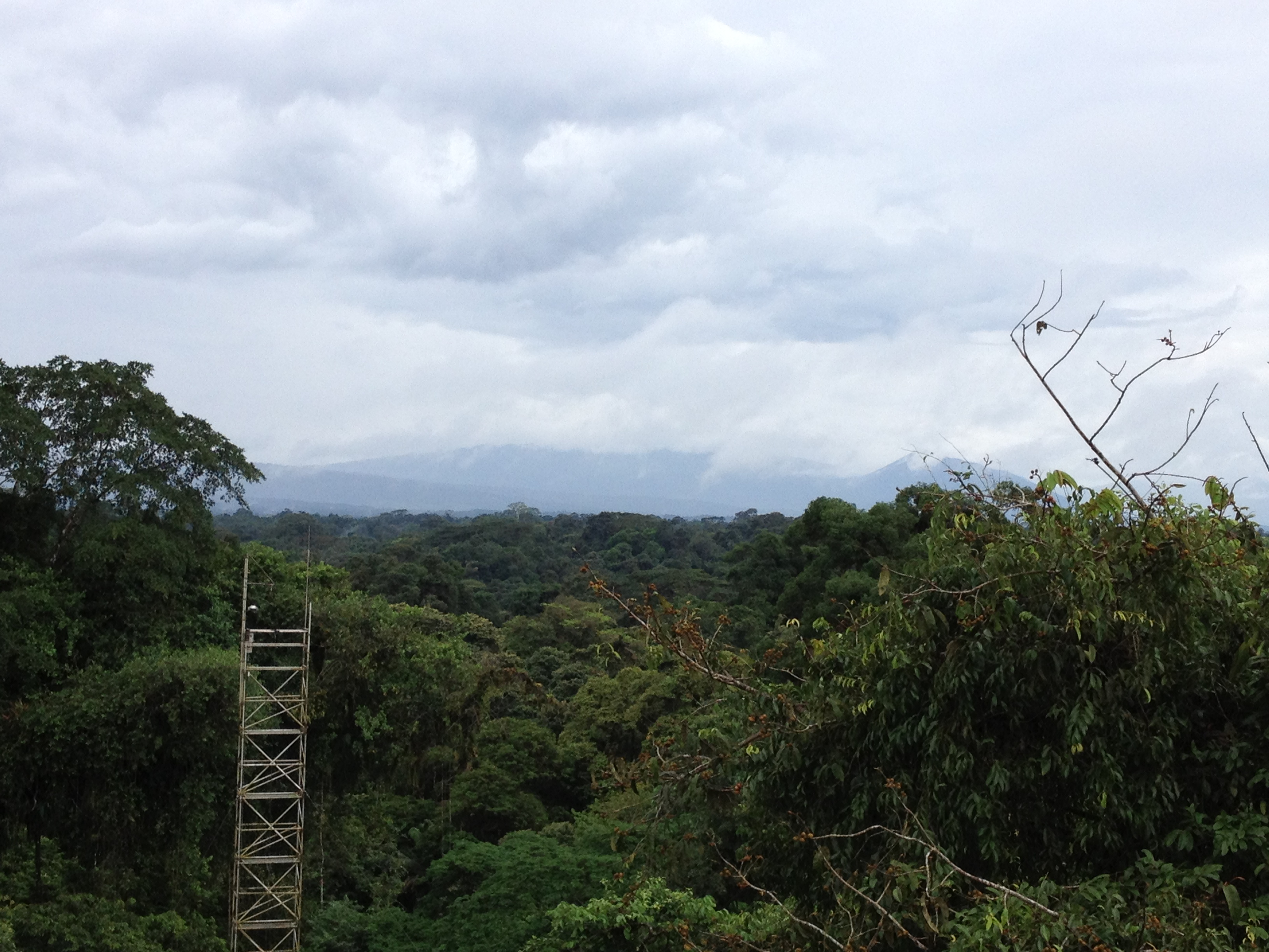 Eddy covariance tower in Costa Rica