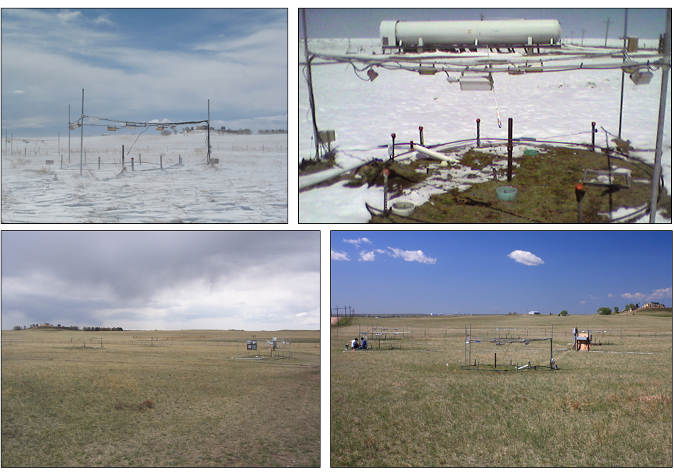 The PHACE site through the seasons (upper left to lower right): snow-covered plot in winter, warmed plot in very early spring (where snowmelt is advanced relative to ambient conditions), early spring after snowmelt, and early summer. Photo credits: D. LeCain, M. Reyes-Fox, S. Cox (USDA-ARS).