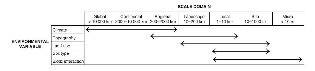 scale_pearson_dawson_2003