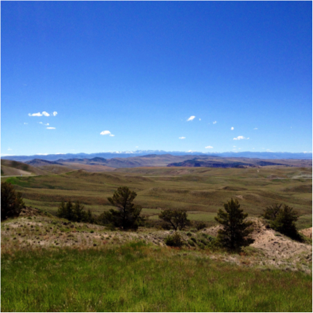 On the drive to Lander, Wyoming.