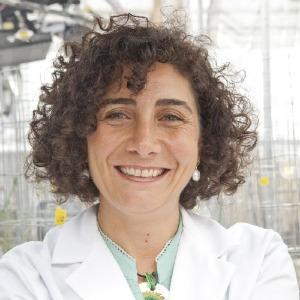 Dr. Francesca Cotrufo