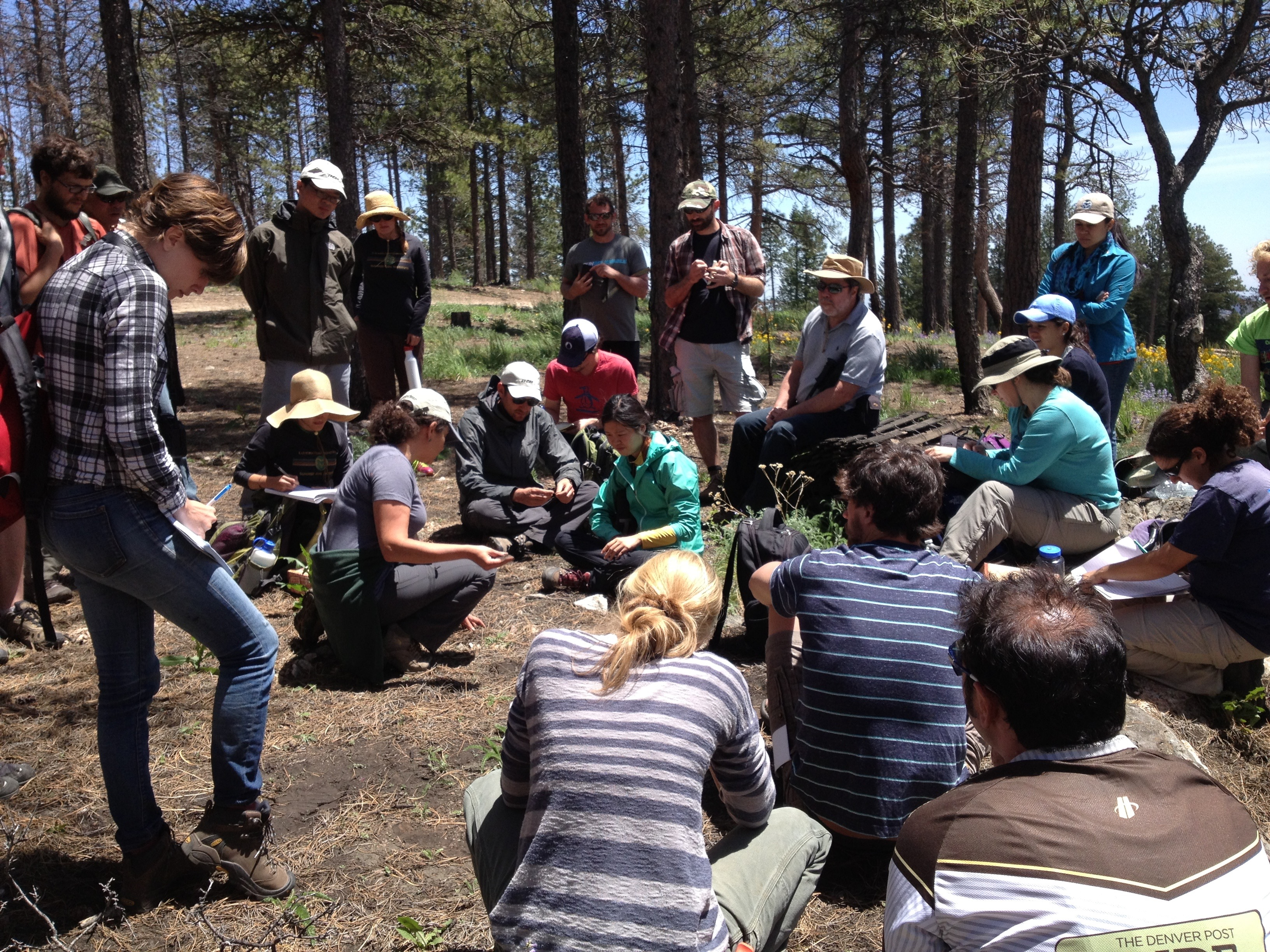 Summer Soils Institute, students in the Forest