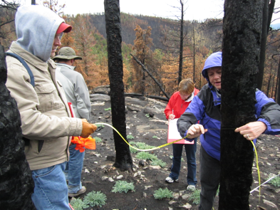 Students collecting data at burn site