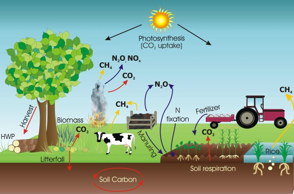 Farm greenhouse gas cycle