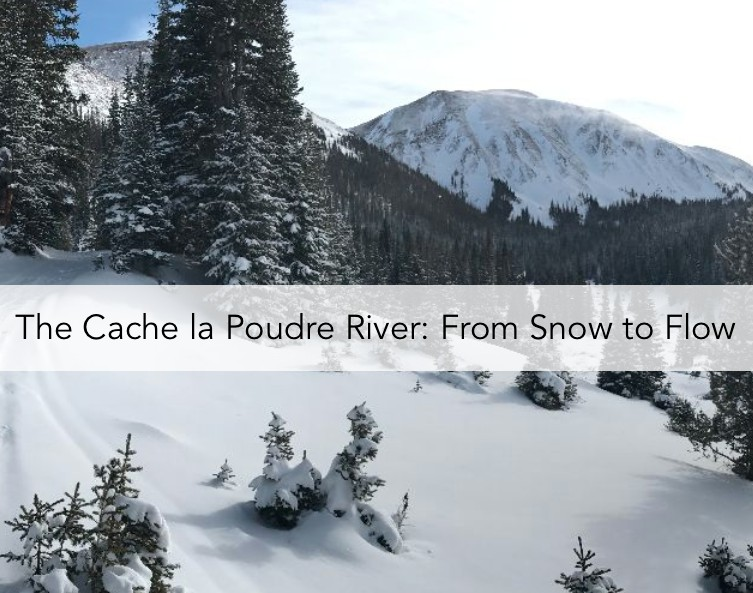 The Cache la Poudre River: From Snow to Flow Story Map Cover