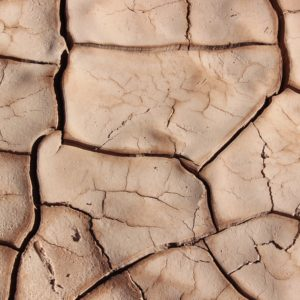 cracked soil, an indication of drought