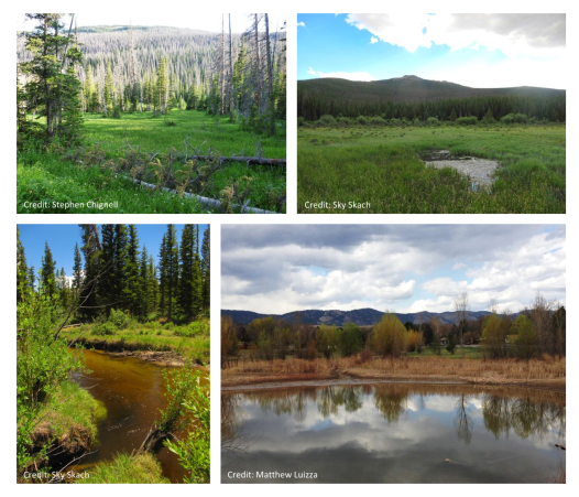 Examples of different kinds of wetlands common in Colorado