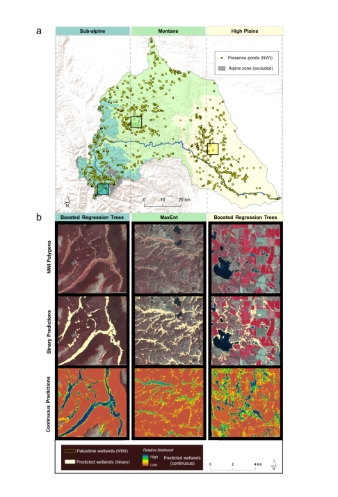 Maps of Cache la Poudre River with colors depicting different variables of interest relating to wetlands