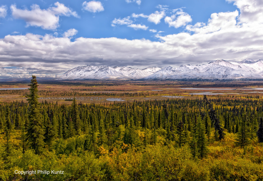 Landscape photo of Alaskan tundra