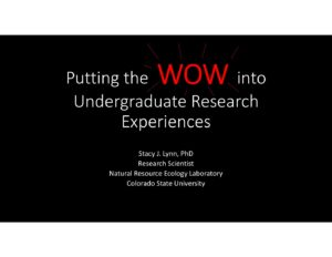 2017 Colloquium: Stacy Lynn- Putting the WOW into Undergraduate Research Experiences