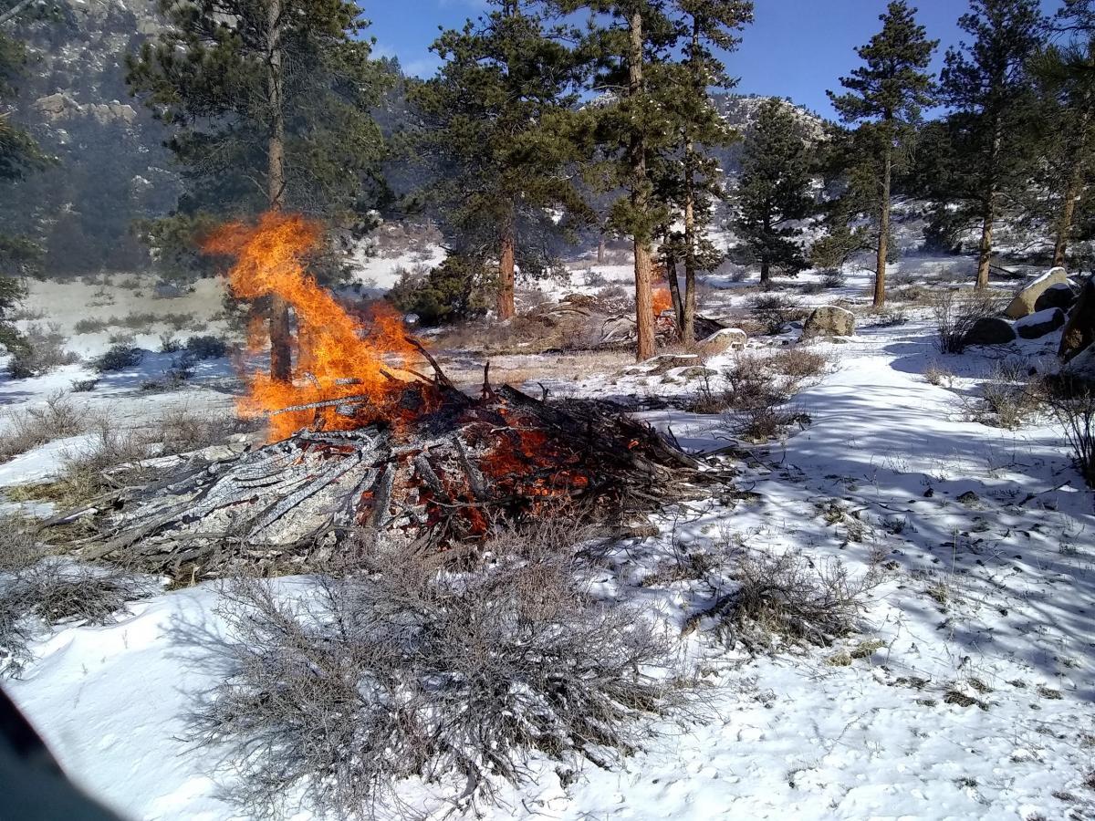 Slash pile of woody debris on fire