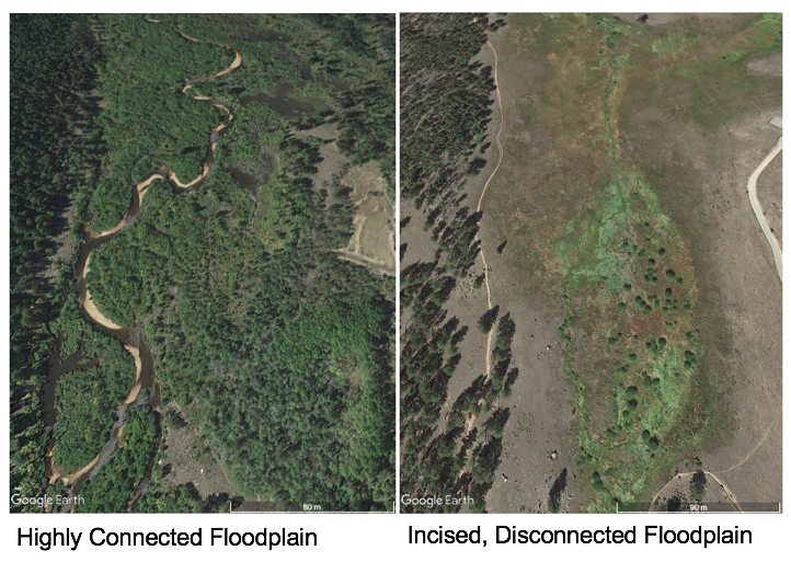 Contrasting visuals of connected and disconnected floodplain