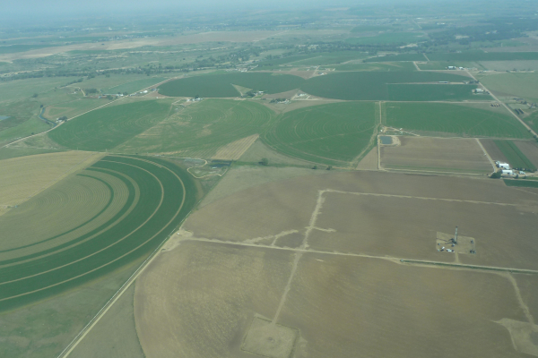 Image of different crop management