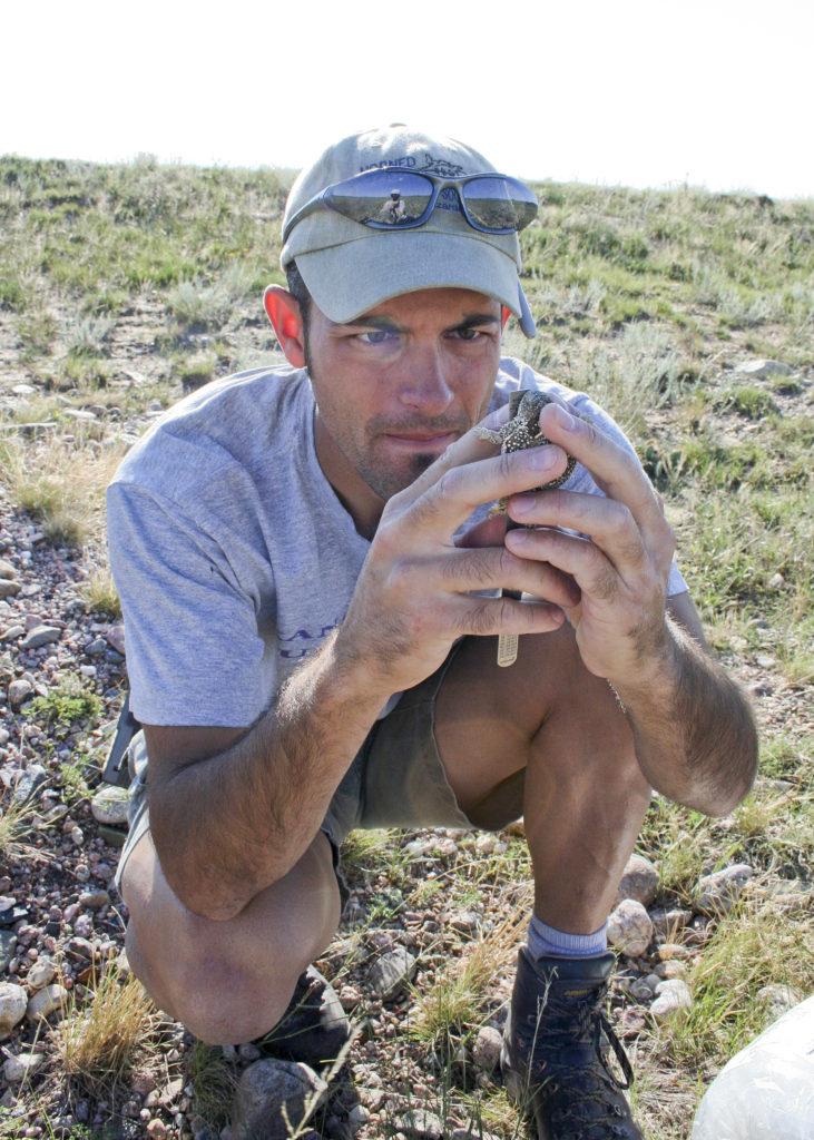 Danny Martin measuring the length of a Colorado Checked Whiptail (Aspidoscelis neotesselata)