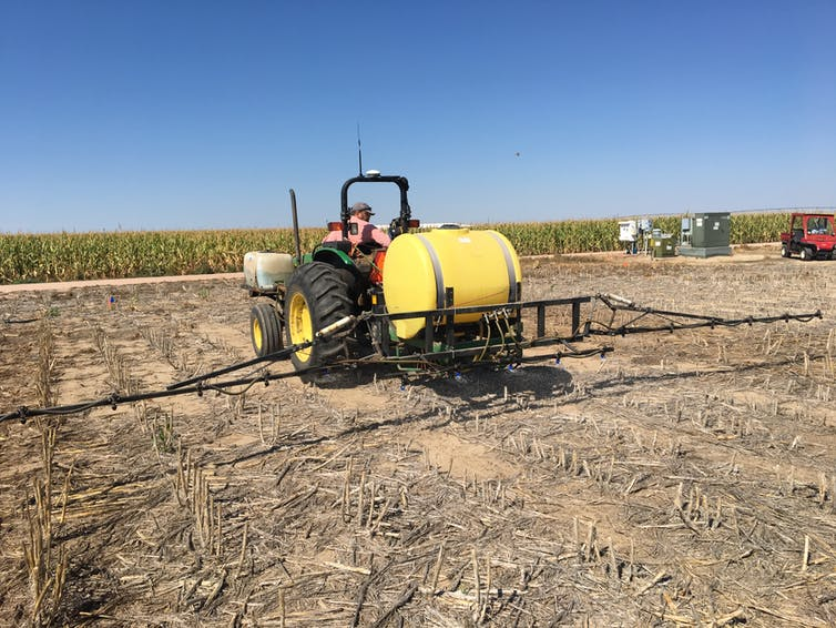 Tractor driver applying lactobionate to soil in a Colorado field trial