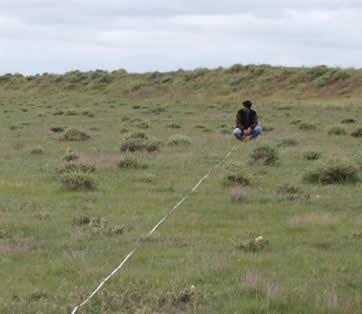 Measuring sample distances