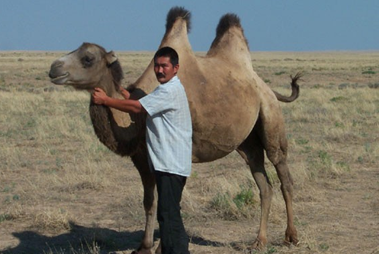 Native with camel