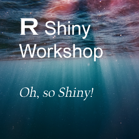 R Shiny Workshop identifier