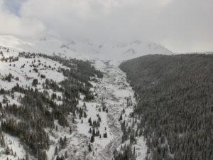 Colorado alpine forest with snow