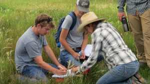 Ranching students in the field
